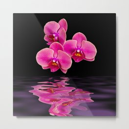 Mystical Pink Orchids Reflections Metal Print