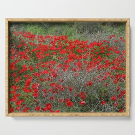 Beautiful Red Wild Anemone Flowers In A Spring Field  Serving Tray
