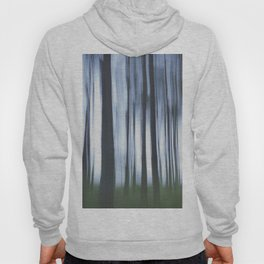 Mysterious Forest Hoody