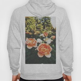 The Rose Garden Hoody