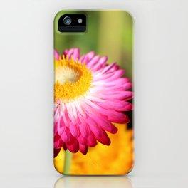 Straw Flowers, Hansville, WA iPhone Case