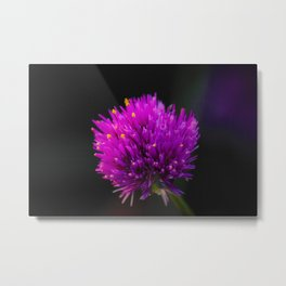 Purple Flower Spike by Reay of Light Photography Metal Print
