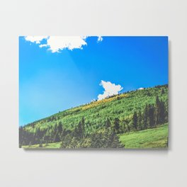 aspens changing color on the mountainside Metal Print