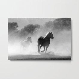 Horses Running Wild Metal Print