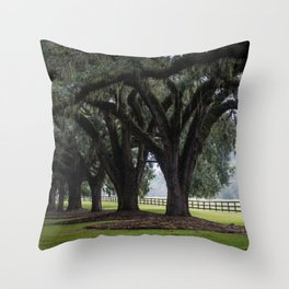 Tree Arch Drive Throw Pillow