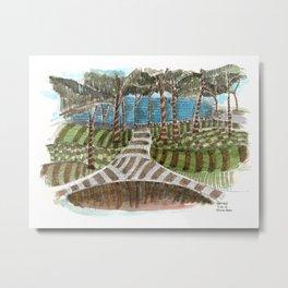 Meandering Landscapes: Swirling Around (BP) Metal Print