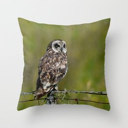 Hawaiian Short Eared Owl on Fence Throw Pillow