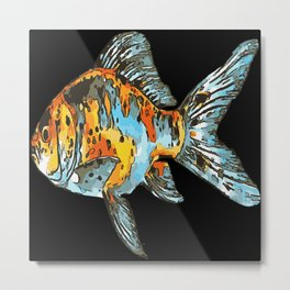 Blue and Orange Shubunkin Goldfish Isolated Metal Print