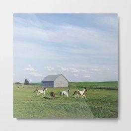 Farm Horses Metal Print