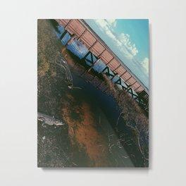 Gator Metal Print