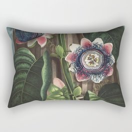 The Quadrangular Passion Flower from The Temple of Flora (1807) by Robert John Thornton Rectangular Pillow