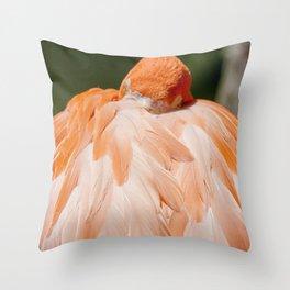 Miami Flamingo Sleeping Throw Pillow