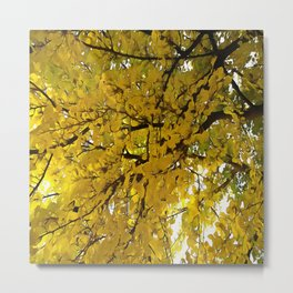 Liquid Amber Autumn Vibes Abstract Metal Print