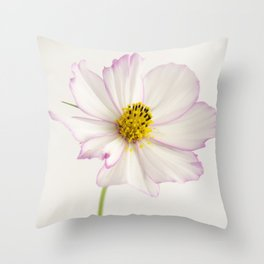 Sensation Cosmos White and Pink Throw Pillow