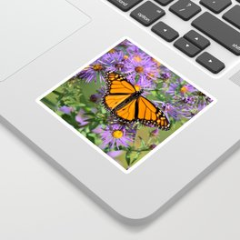 Monarch Butterfly on Wild Asters (square) Sticker