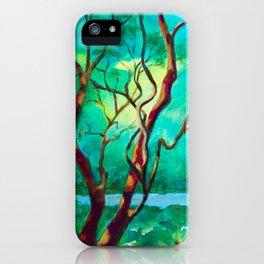 Dancing in the Moonlight iPhone Case