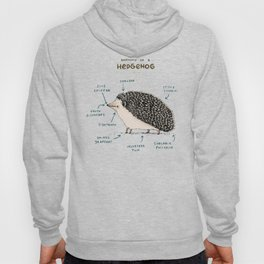 Anatomy of a Hedgehog Hoody