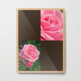 Pink Roses in Anzures 2 Blank Q3F0 Metal Print