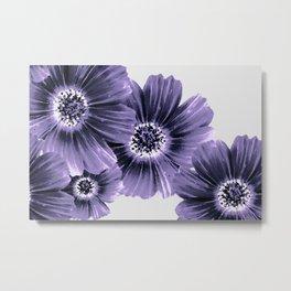 Daisies floral in soft lavender hues Metal Print