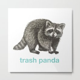 Trash Panda Metal Print