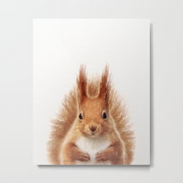 Baby Squirrel, Baby Animals Art Print By Synplus Metal Print