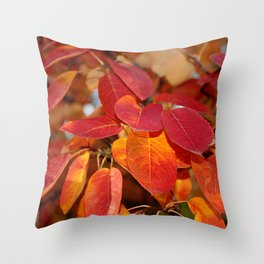 Autumn Glory - Juneberry leaves, Amelanchier Throw Pillow