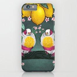 Yellow Headed Fruit Dove iPhone Case