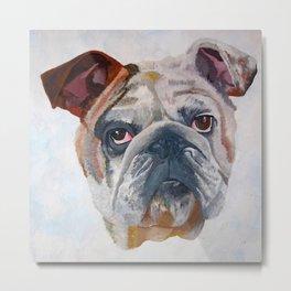 American Bulldog Portrait: Yale Mascot Metal Print