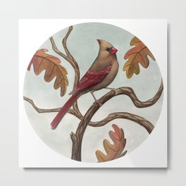 Cardinal (Female) Metal Print