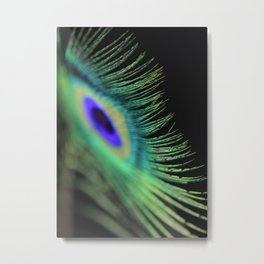 Peacock feather Metal Print