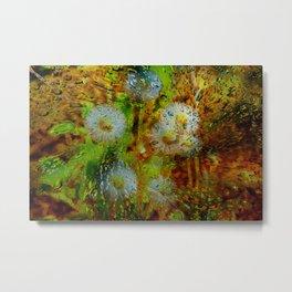 Concept abstract : Dandelion / Pusteblume Metal Print