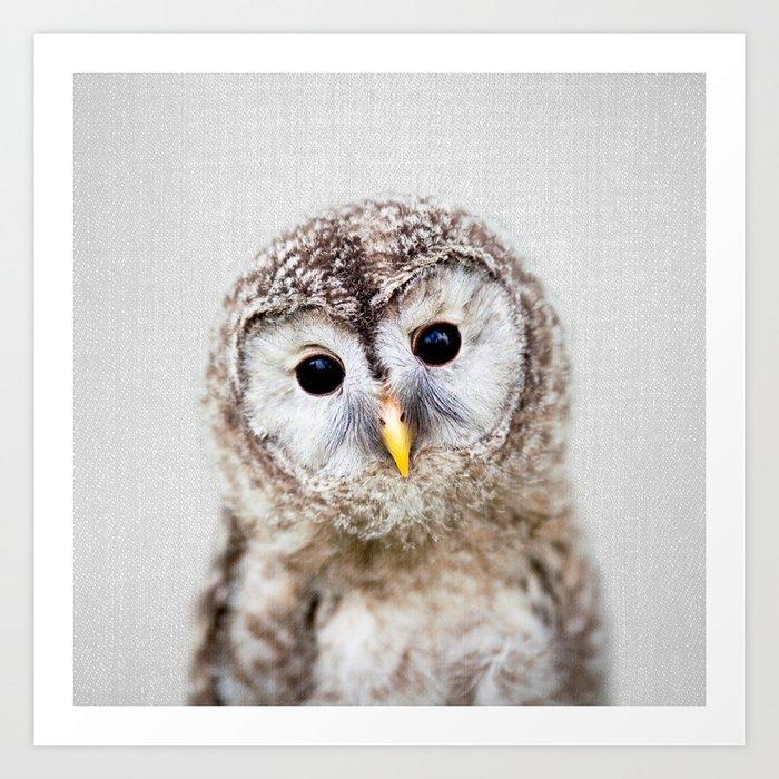 Baby Owl - Colorful Art Print
