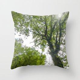 Wild nature parks IV - Nature Fine Art photography Throw Pillow