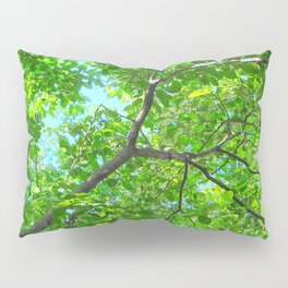 Canopy of Green, Leafy Branches with Blue Sky Pillow Sham