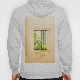 Seville V [ Andalusia, Spain ] Greenery on yellow window⎪Colorful travel photography Poster Hoody
