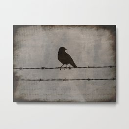 Rustic Black Bird Barbed Wire Modern Country Home Decor Art Matted Picture A476 Metal Print
