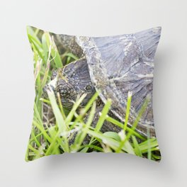 Snapping Turtle 5 Throw Pillow
