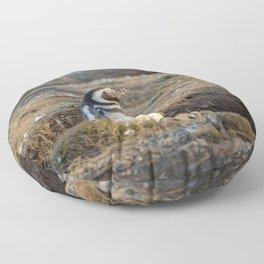 Magellanic penguin Floor Pillow
