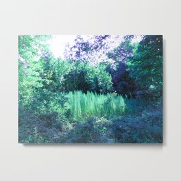 Do Fairies Live Here? Metal Print