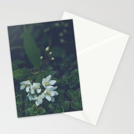 Little white flowers Stationery Cards