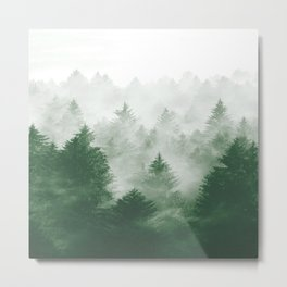Foggy Woods III Metal Print
