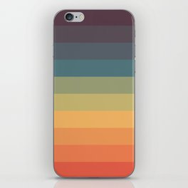 Colorful Retro Striped Rainbow iPhone Skin