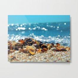 Wave Series Photograph No. 10 - Seashells and Waves Metal Print