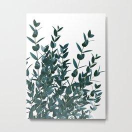 Eucalyptus Leaves Delight #1 #foliage #decor #art #society6 Metal Print