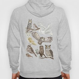 Owls Illustrated Chart Hoody