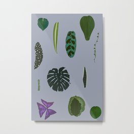 A non-scientific botanical investigation of the indoor plant. Metal Print