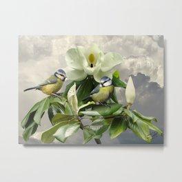 Blue Tits in Magnolia Tree Metal Print