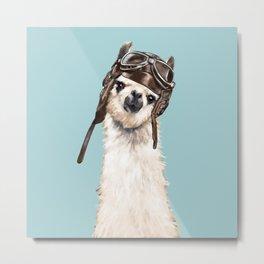 Cool Pilot Llama in Blue Metal Print