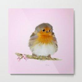 Bird Art: Cute Robin with Apple Blossom Metal Print