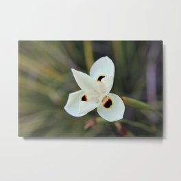 FlowerA Metal Print